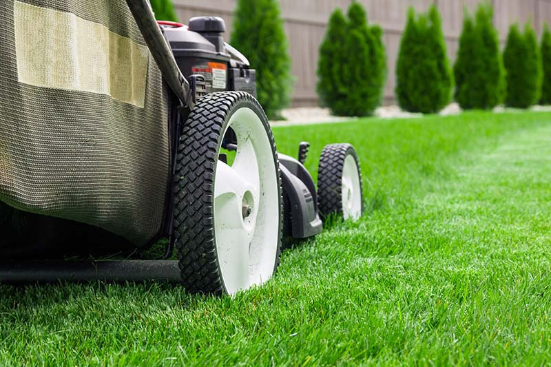 Lawn Mower MCD Contracting